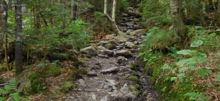 Crawford Path, a good reason to wear hiking boots!
