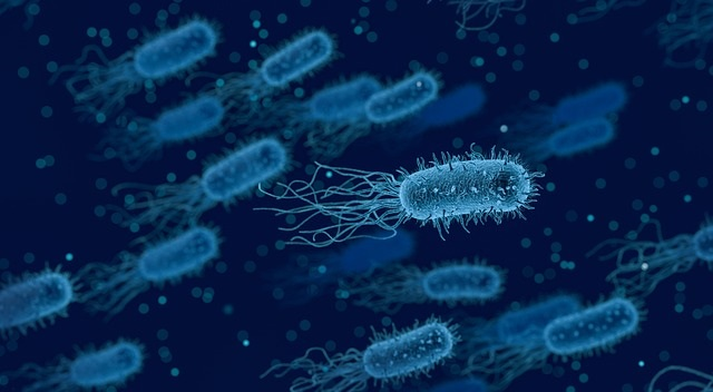 Protozoa in water supply, can lead to giardia.